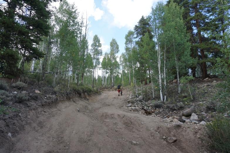 Subaru stopping deep potholes 0.5 miles up the dirt road