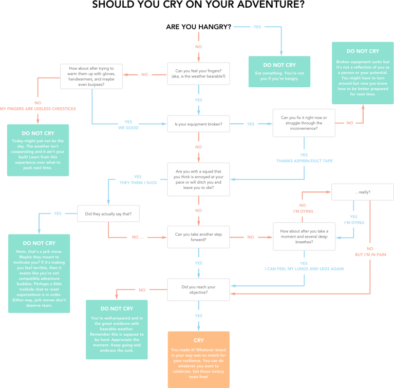 Updated Should You Cry Flowchart